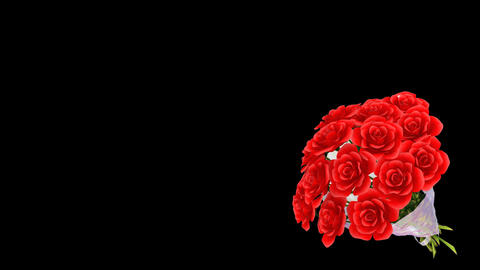 Rose Bouquet Bm Stock Video Footage
