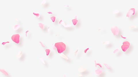 Rose Petals A2 Animation