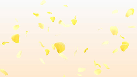 Rose Petals A3 Animation
