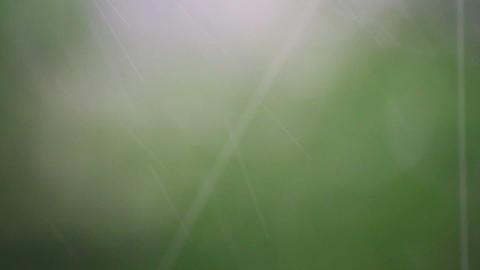 abstract summer rain defocused background Stock Video Footage