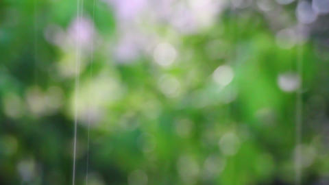 abstract summer rain defocused background Footage