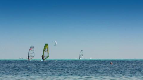 surfing - windsurfers and kitesurfer on blue sea s Stock Video Footage