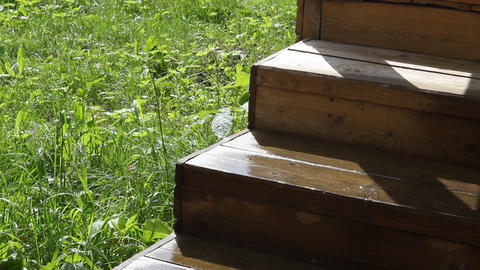Wooden Step stock footage