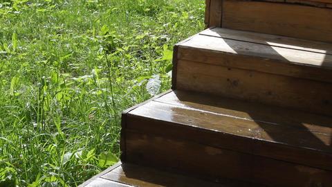 Wooden step ビデオ