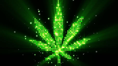 cannabis leaf shape last 10s loop Stock Video Footage