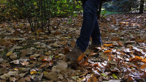 Walk on the leaves in park Stock Video Footage