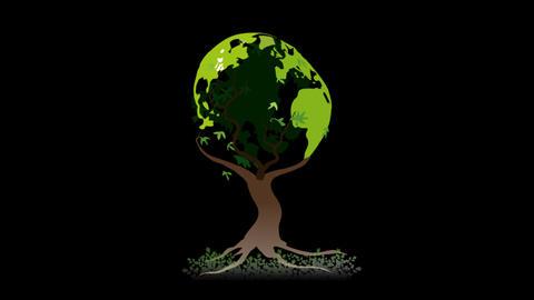 Globe Tree Stock Video Footage