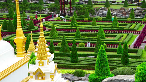 Nong Nooch tropical garden in Thailand Stock Video Footage