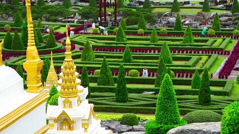 Nong Nooch tropical garden in Thailand Stock Video Footage