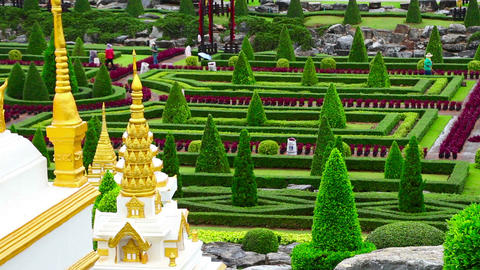 Nong Nooch tropical garden in Thailand Footage