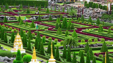 Nong Nooch tropical botanical garden in Thailand Stock Video Footage