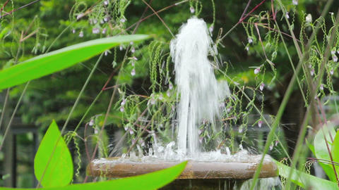 fountain in tropical garden Stock Video Footage