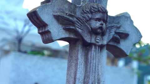 Gravestone Dolly shot Stock Video Footage