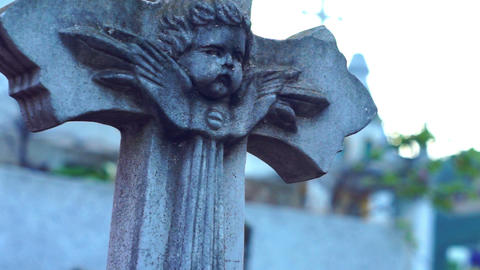 Gravestone Dolly Shot stock footage