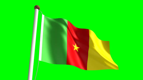 Cameroon flag Stock Video Footage