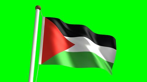Palestine flag Stock Video Footage