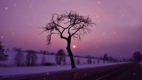 Winter night Stock Video Footage