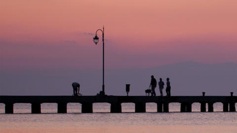 Family walking their dog on a pier at sunset Stock Video Footage