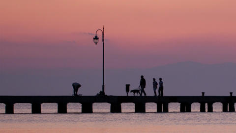 Family Walking Their Dog On A Pier At Sunset stock footage