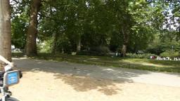 St. James's Park outside Buckingham Palace, United Stock Video Footage