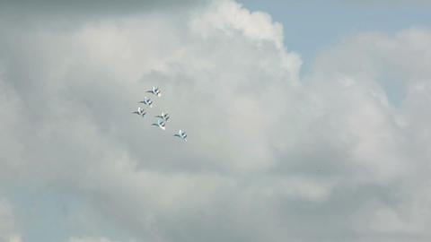 Aerobatics Stock Video Footage