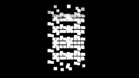 Square random w M Animation