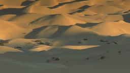 Dunes 004 HD-NTSC-PAL Stock Video Footage