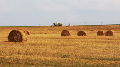 landscape with harvested bales of straw and combin Footage