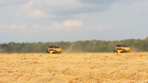 combines harvest in a field Stock Video Footage