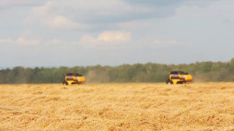 combines harvest in a field Footage