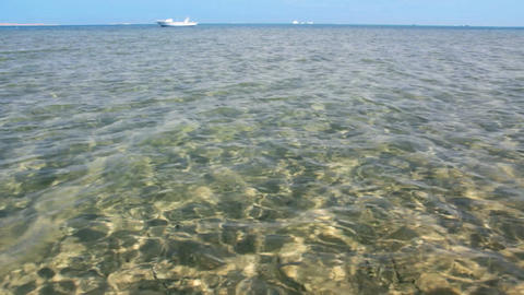 transparent sea water in shallow with glare from s Stock Video Footage