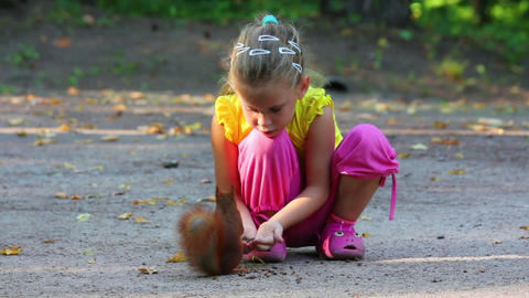 little girl feeding squirrel with nuts in park Stock Video Footage