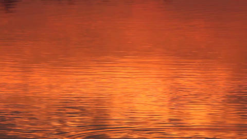 red sunrise reflection in the river Stock Video Footage