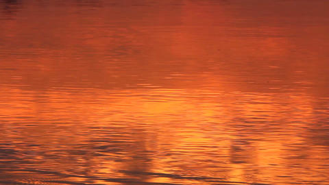 red sunrise reflection in the river Footage