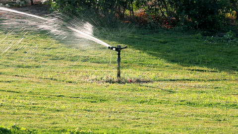 sprinkler watering green lawn Stock Video Footage