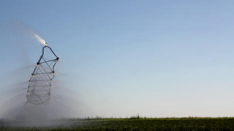 timelapse with irrigation of a potato field Stock Video Footage