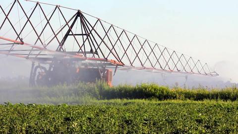 irrigation of a potato field Stock Video Footage
