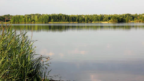 landscape with evening lake Footage