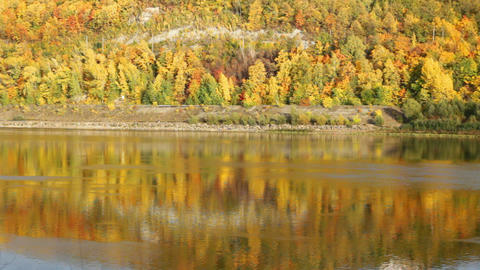 autumn landscape with river Stock Video Footage