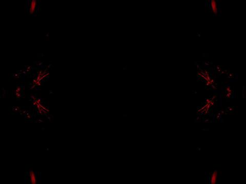 Symmetry #5 Stock Video Footage