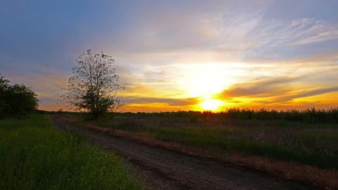 summer landscape - sunset Stock Video Footage