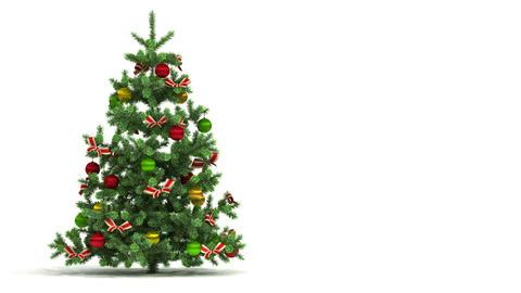 Beautiful Christmas tree looped on white backgroun Stock Video Footage