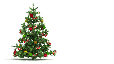 Beautiful Christmas tree looped on white backgroun Animation