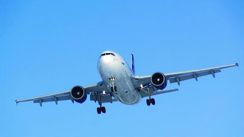 Plane landing. Blue sky. HD Stock Video Footage