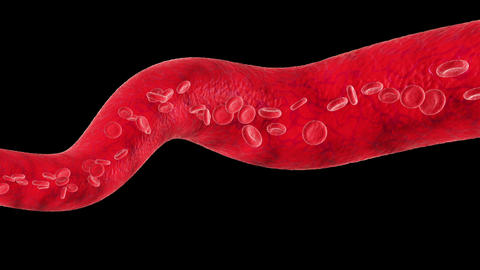 Veins With Flowing Blood Cells. Every Part Is Loop stock footage