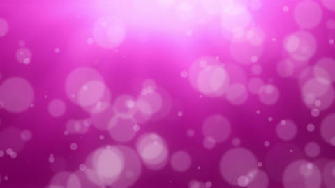 Pink Bokeh Dot Background Animation