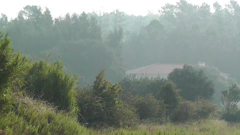 Country House in the Mist 1 Stock Video Footage