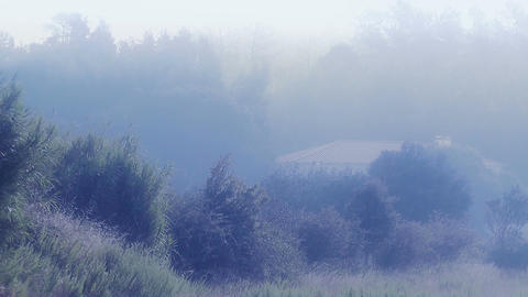 Country House in the Mist 3 Stock Video Footage
