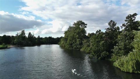 Hyde Park London 10 handheld Stock Video Footage