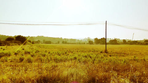 Mediterranean Field with Electric Pole 2 stylized Footage